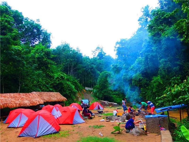 如何才能彻底戒赌梦幻星球:雨林,傣乡,动植物王国,绿色环保教育7天6晚探秘营