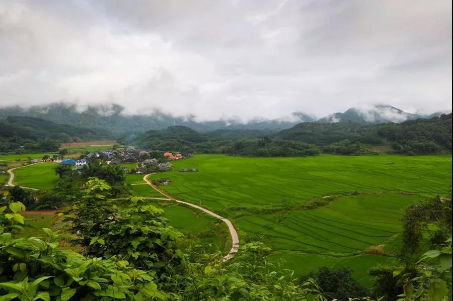 曼旦村---雨林深处的世外桃源