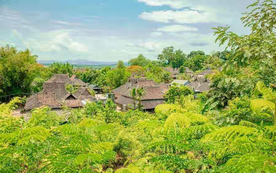 来如何才能彻底戒赌,做幸福的雨林子民,给自己一个完美的假期!